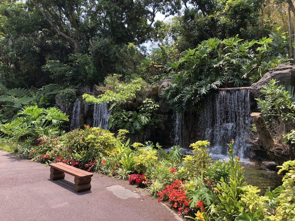 ジャングル花の谷 フラワーパークかごしま