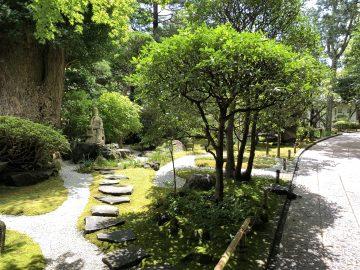お庭 報国寺 鎌倉